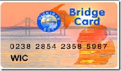michigan-bridge-card_20090401110223_320_240