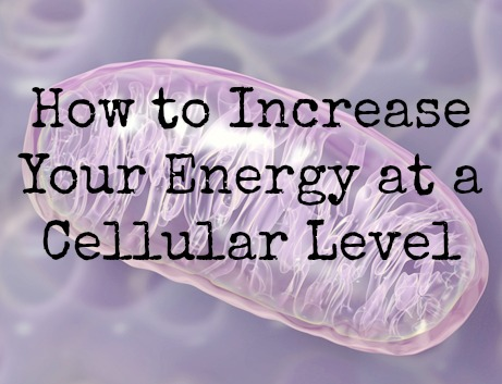 cellular-energy